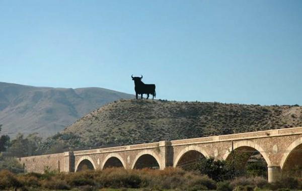 Toro Puente